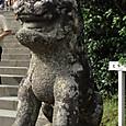 鎌倉 鶴丘八幡